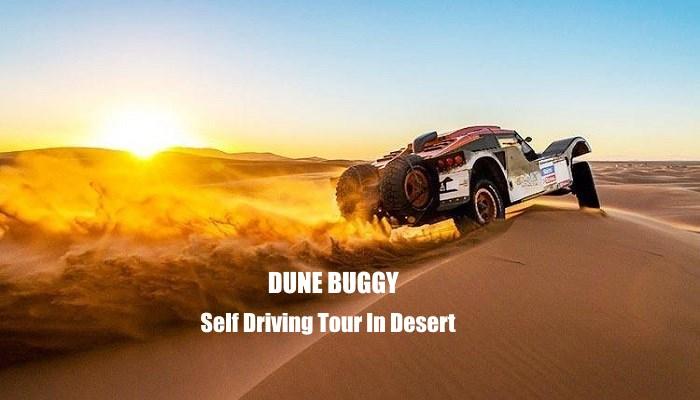 desert dune buggy safari trip