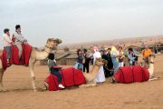 Camel riding experience in dubai desert safari