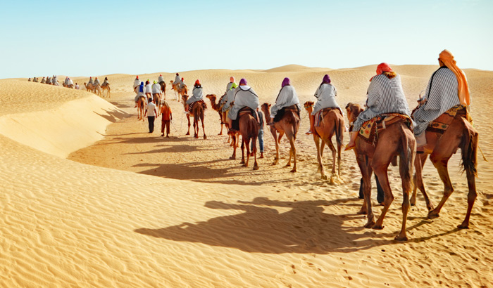 Best Desert Safari Dubai Tour Only 55 Aed With Bus Pick