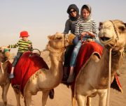 morning desert safari dubai camel ride