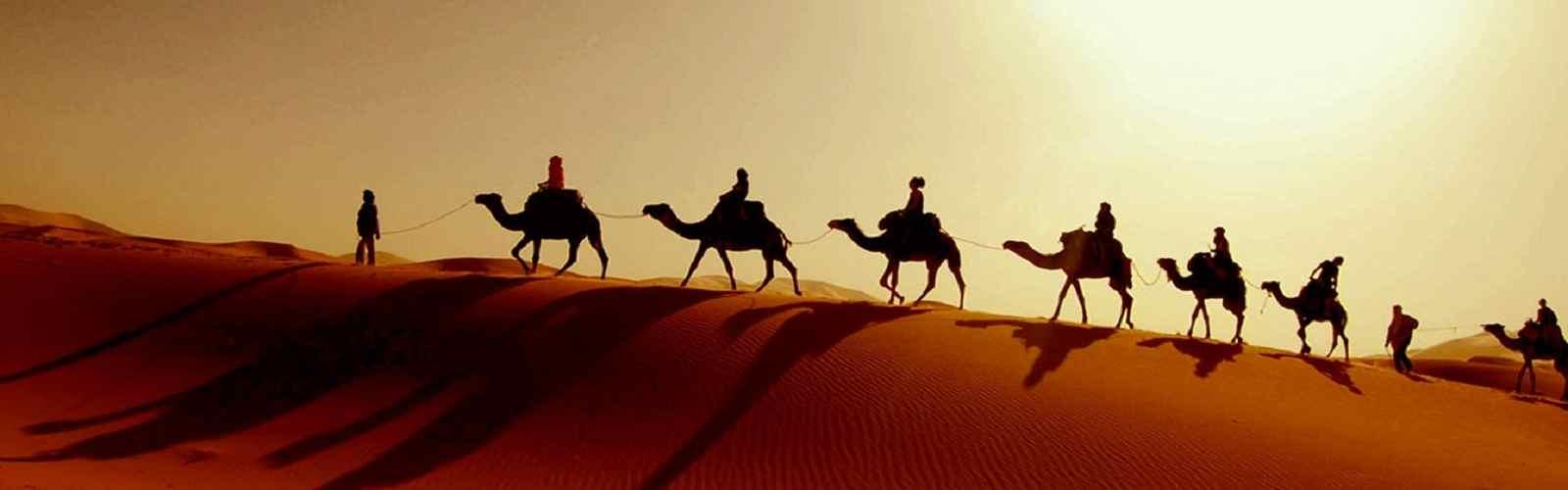 VIP Desert Safari, Home Pickup Land Cruiser, VIP Tents
