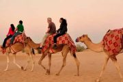 dubai-desert-safari-land-cruiser-camel-ride-dune-bashing