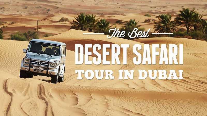 How To Choose Best Desert Safari Tour In Dubai Dubai