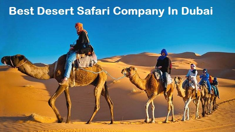 best desert safari company in dubai