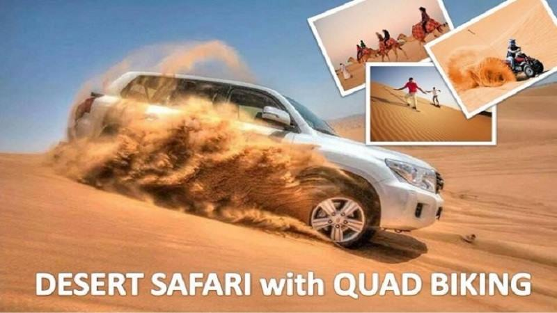 quad biking and camel riding desert safari dune bashing