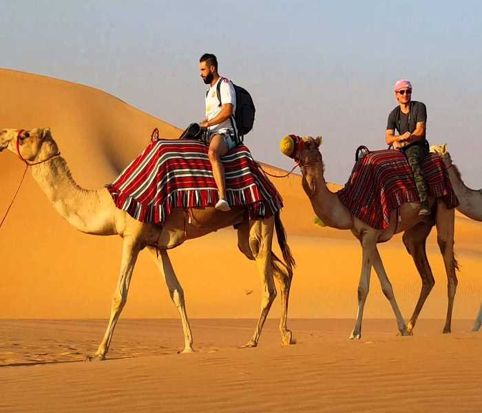 camel safari dubai, camel desert tour, camel trekking tour platinum heritage