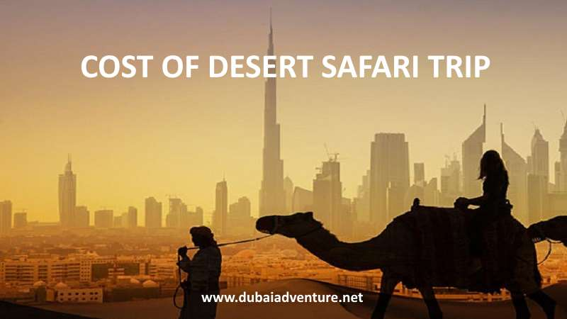 cost of desert safari price